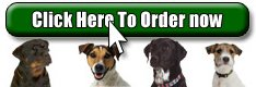 Buy The Dog Owners Guide